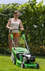 Lawn Mower Sales Can Help You Trim Your Lawn More Often