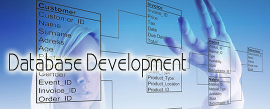 The Fastest Growing Business In IT Industry Is Database Development