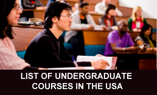 Undergraduate Study In The USA