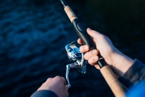 Everything You Need to Know Before Buying Fishing Rod