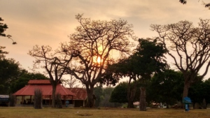 What Interesting Things You Can Indulge At Bandipur National Park During You Trip?