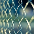 Ensuring Privacy: A Guide to the Different Types of Fencing Materials